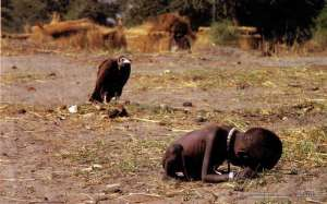 A vulture's patience in South Sudan